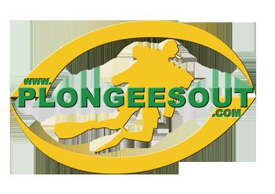 www.plongeesout.com